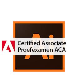 proefexamen ACA Illustrator