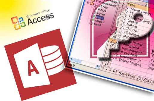 Cursus VBA Access - Opatel Opleidingen en Consultancy