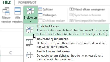 Excel - Beeld - Titels Blokkeren