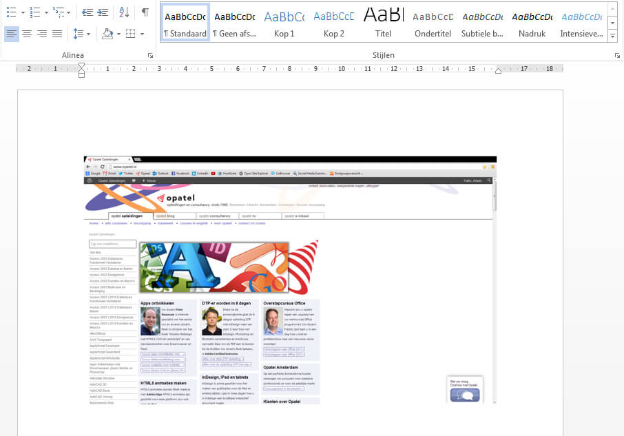Screenshot in Word