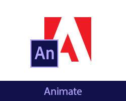 Online cursus Adobe Animate