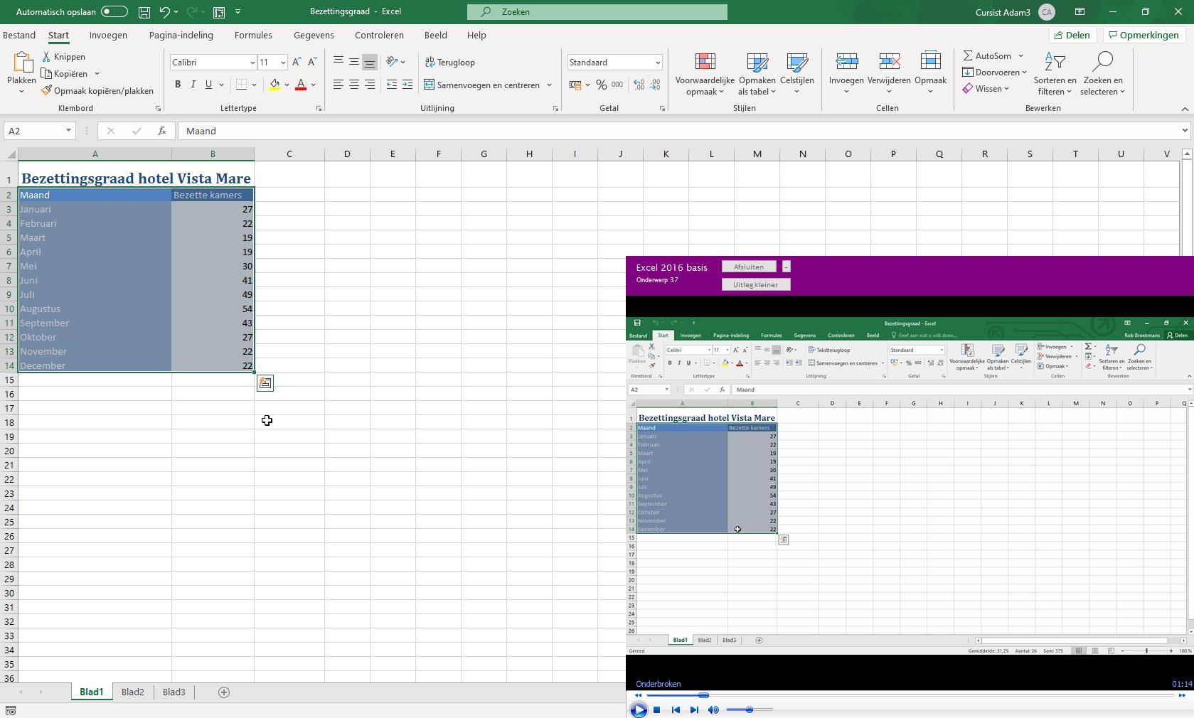 De online lesomgeving van de Excel cursus