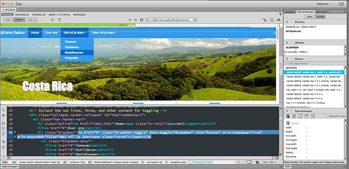 Cursus Webdesign. Achtdaagse opleiding