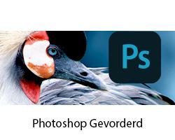 online cursus photoshop gevorderd